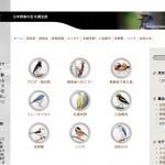 野鳥の会札幌支部ウェブサイト